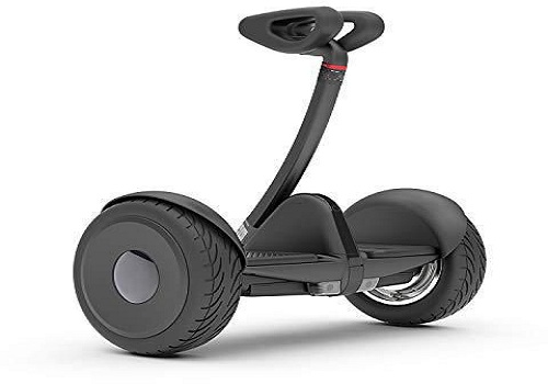Buy Riding Toys from Japan