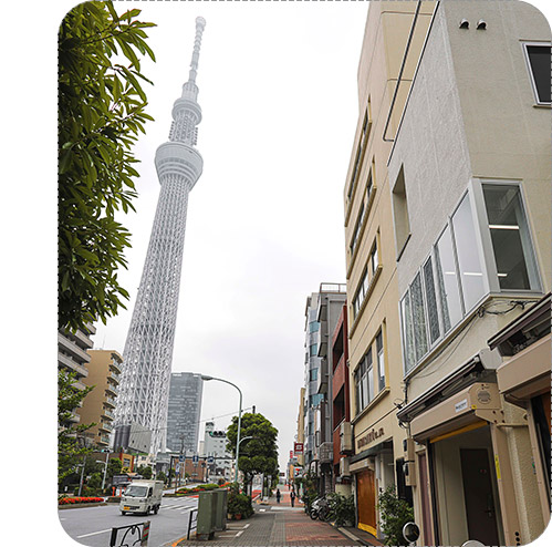 Hatori Shop Location